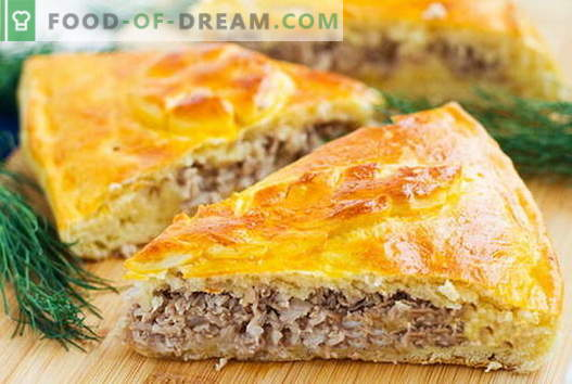 Piim ja lihatipad on parimad retseptid. Kuidas õigesti ja maitsvaid küpsetada lihatükke.