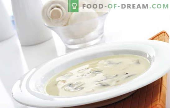 Zupa kremowa Champignon jest trudnym, ale niedrogim daniem dla każdego smaku. Zupa kremowa z różnymi odmianami bazy