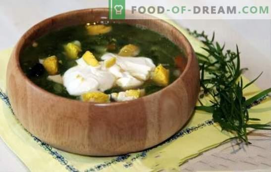 Zupa szczawiowa w bulionie z kurczaka - menu wiosna-lato. Zupa szczawiowa z bulionem z kurczaka - szybkie przepisy na pierwsze dania ze zdrowym racjonalizmem
