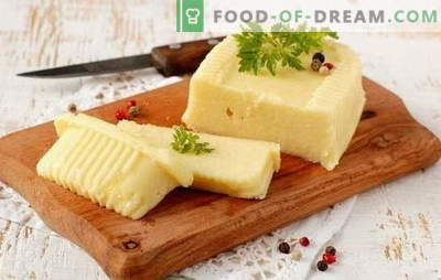 Jak zrobić ser z mleka własnymi rękami: miękki i twardy. Przepisy na ser z mleka w domu i technologii