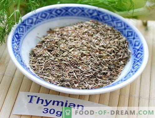Tymianek - opis, właściwości, wykorzystanie w gotowaniu. Przepisy potraw z tymiankiem.