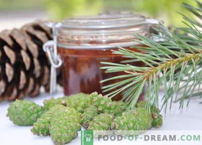 Dżem szyszek sosnowych: jak prawidłowo gotować