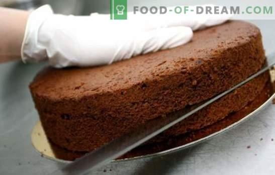 Ciasta do ciast - proste przepisy z ciasta biszkoptowego, powietrznego i migdałowego. Proste ciasta: tajemnice gotowania
