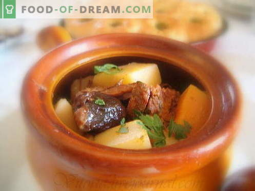 Ziemniaki z mięsem to najlepsze przepisy. Jak właściwie i smacznie gotować ziemniaki z mięsem w doniczkach.