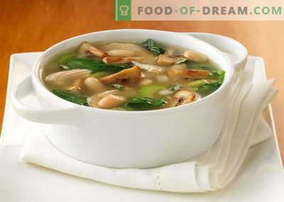 Zupa grzybowa z suszonych, świeżych, mrożonych grzybów i pieczarek - najlepsze przepisy. Jak prawidłowo i smacznie gotować zupę grzybową z serem, śmietaną i powolną kuchenką.