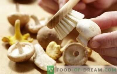 Jak czyścić pieczarki: do gotowania, smażenia, marynowania. Czy przed pieczeniem pieczarki posprzątać i dlaczego?