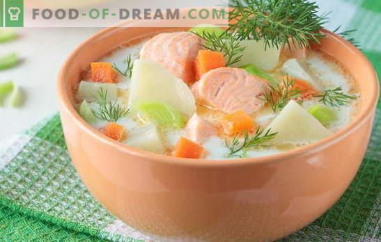 Czerwona zupa rybna - jak dla dorosłych i dzieci. Przepisy krok po kroku na pyszne czerwone zupy rybne: łosoś, łosoś, różowy łosoś