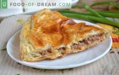 Piščančje meso z mletim mesom - hranljivo in okusno! Kako speči slastno testo z mletim mesom in sirom, jajci, gobami