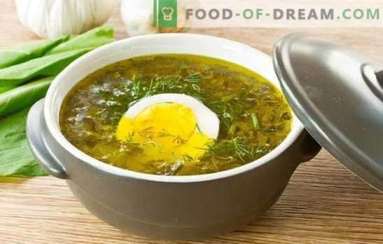 Zupa szczawiowa z jajkiem: przepisy krok po kroku od serdecznego do dietetycznego. Gotowanie zup szczawiowych z jajkiem, ryżem, serem i płatkami owsianymi