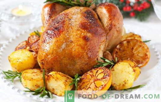 Kurczak z cytryną - najlepsze przepisy. Jak prawidłowo i smacznie ugotować kurczaka z cytryną.